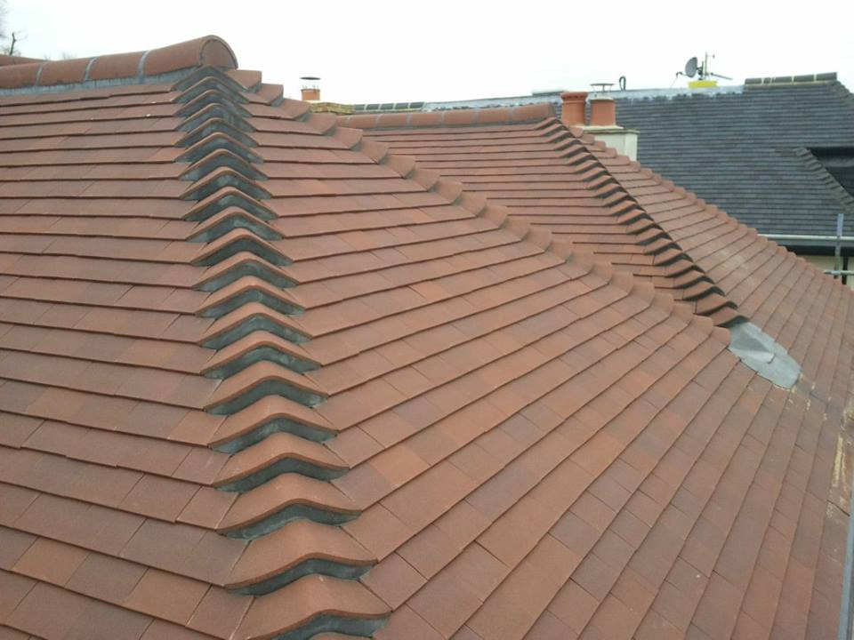 New Roof 65